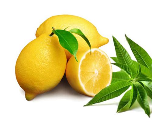 Limão Verbena